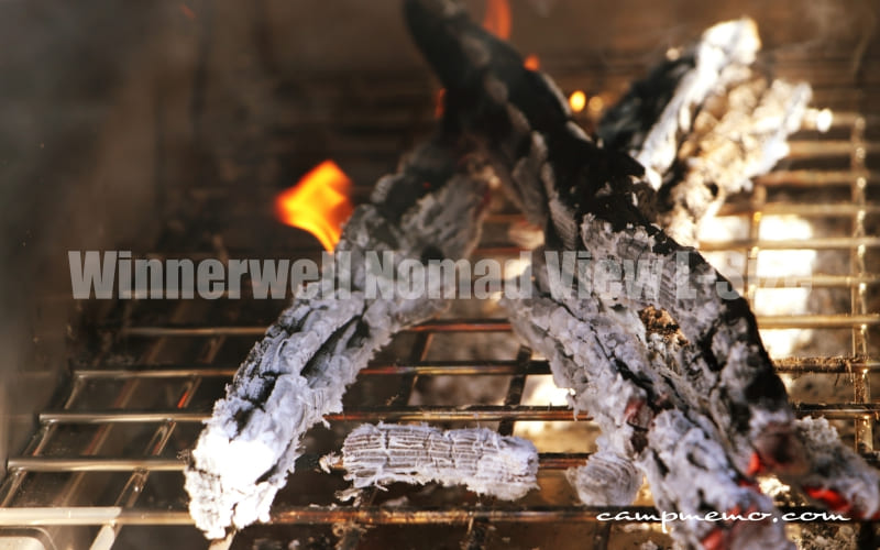 Winnerwell Nomad View L-Size きれいに燃えた薪